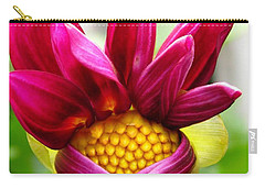 Dahlia From The Showpiece Mix Carry-all Pouch by J McCombie