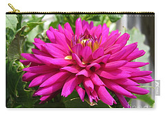 Dahlia Named Andreas Dahl Carry-all Pouch by J McCombie