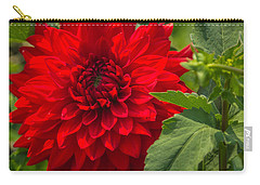 Dahlia Perfection Carry-all Pouch
