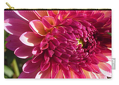 Carry-all Pouch featuring the photograph Dahlia Pink 1 by Susan Garren