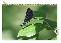 Carry-all Pouch featuring the photograph Damselfly  by Karen Silvestri