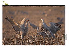 Dancing Sandhills Carry-all Pouch