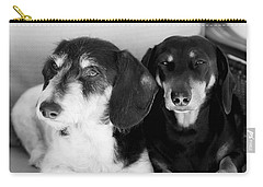 Dapper Doxies Carry-all Pouch