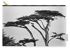 Dark Cypress Carry-all Pouch by Melinda Ledsome