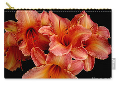 Carry-all Pouch featuring the photograph Daylilies 1 by Rose Santuci-Sofranko