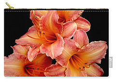 Daylilies 2 Carry-all Pouch by Rose Santuci-Sofranko
