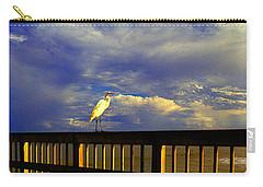 Daytona Beach Fl Bird Sun Glow Pier  Carry-all Pouch