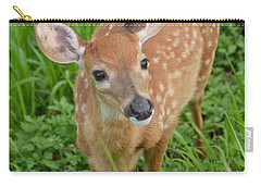 Deer 42 Carry-all Pouch