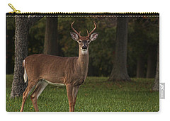 Carry-all Pouch featuring the photograph Deer In Headlight Look by Tammy Espino