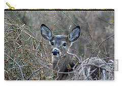 Carry-all Pouch featuring the photograph Deer by Karen Silvestri