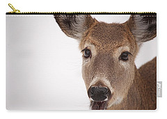 Deer Talk Carry-all Pouch by Karol Livote