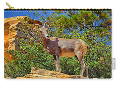 Carry-all Pouch featuring the photograph Desert Bighorn Sheep by Greg Norrell