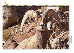 Desert Bighorn Sheep Carry-all Pouch