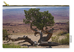 Desert Tree Carry-all Pouch