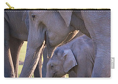 Dhikala Elephants Carry-all Pouch by David Beebe