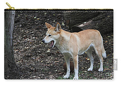 Dingo #2 Carry-all Pouch