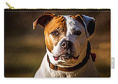 Carry-all Pouch featuring the photograph Dixie Doodle The Pit Bull by Eleanor Abramson