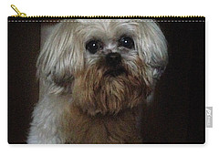 Dog In The Box Carry-all Pouch