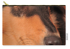 Dog Portrait Carry-all Pouch by Randi Grace Nilsberg