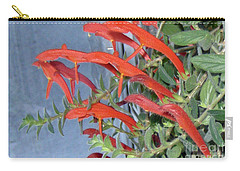 Carry-all Pouch featuring the photograph Dolphin Plant by Brenda Brown