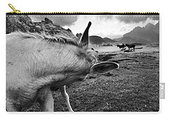 Donkeys Carry-all Pouch