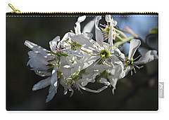 Downy Serviceberry Carry-all Pouch by William Tanneberger