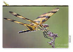 Carry-all Pouch featuring the photograph The Halloween Pennant Dragonfly by Olga Hamilton