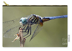 Dragonfly Smile Carry-all Pouch