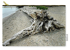 Carry-all Pouch featuring the photograph Driftwood At Lake Erie by Kathy Barney