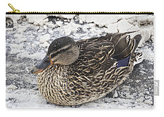 Duck Setting On A Winter Road Carry-all Pouch
