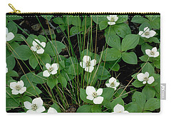 Carry-all Pouch featuring the photograph Dwarf Dogwood by Doug Herr