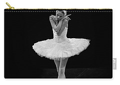 Dying Swan 5. Carry-all Pouch by Clare Bambers