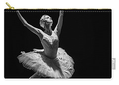 Dying Swan 6. Carry-all Pouch by Clare Bambers