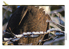 Eagle Sunset Carry-all Pouch by Stanza Widen