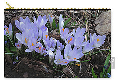 Early Crocuses Carry-all Pouch by Donald S Hall