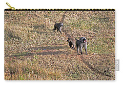 Early Morning Stroll Carry-all Pouch by Tony Murtagh