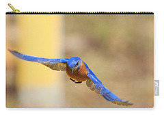 Eastern Bluebird Carry-all Pouch by Everet Regal