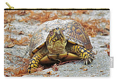 Carry-all Pouch featuring the photograph Eastern Box Turtle by Cynthia Guinn