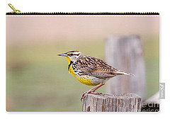 Eastern Meadowlark Sturnella Magna Carry-all Pouch