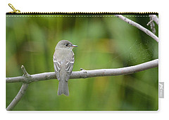 Eastern Wood Pewee Carry-all Pouch