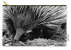Carry-all Pouch featuring the photograph Echidna by Miroslava Jurcik