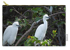 Egret Chicks Waiting To Be Fed Carry-all Pouch
