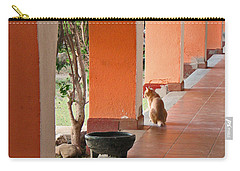 Carry-all Pouch featuring the photograph El Gato by Marcia Socolik
