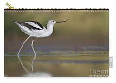 Elegant Avocet Carry-all Pouch by Bryan Keil