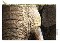 Elephant Close-up Portrait Carry-all Pouch