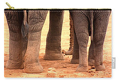 Carry-all Pouch featuring the photograph Elephant Family by Amanda Stadther
