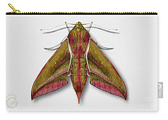 Elephant Hawk Moth Butterfly - Deilephila Elpenor Naturalistic Painting - Nettersheim Eifel Carry-all Pouch
