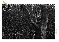 Carry-all Pouch featuring the photograph Elizabethan Gardens Tree In B And W by Greg Reed