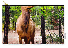 Carry-all Pouch featuring the photograph Elk - Mather Grand Canyon by Bob and Nadine Johnston