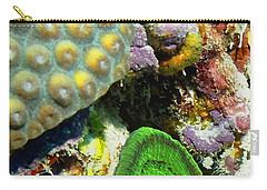 Carry-all Pouch featuring the photograph Emerald Artichoke Coral by Amy McDaniel